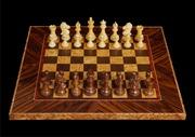 Шахматы «Обузданный конь» код 0090