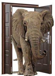 Двери нестандартных размеров,  от производителя дверей - металл,  МДФ,  м