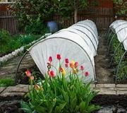 Теплицы и парники для вашего огорода