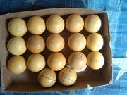 продам набор бильярдных шаров 17штук СССР