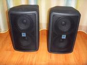 Продам контрольный (персональный) монитор ALTO PAM5T    Б/У