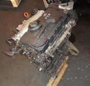 Головка двигателя,  2.0 TDI BKD (без форсунок). Skoda,  VW.