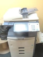 Срочно продам Xerox docucolor 12!!