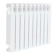 Радиатор отопления BITHERM